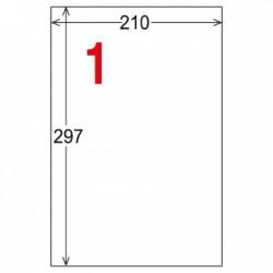 龍德 A4 電腦標籤紙 LD-800-TI-C 210*297mm 5張入 (1格) 透明三用標籤(可列印)