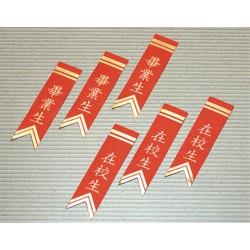 畢業生/在校生 紙絨儀條
